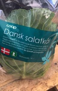 Salatkål / Sommerhvidkål fra Svinningegård. Nem mad